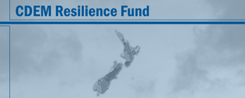 cdem resilience fund 350x140